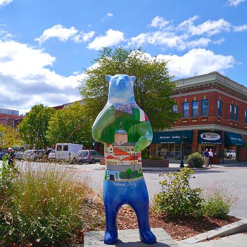 Hendersonville NC Bears